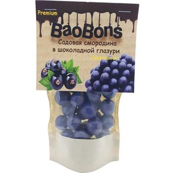 Садовая смородина в шоколадной глазури (150 гр.) - BaoBons Premium (10 шт.) - фото 42218