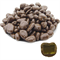 Манго в молочной шоколадной глазури (3 кг) - Standart - фото 42046
